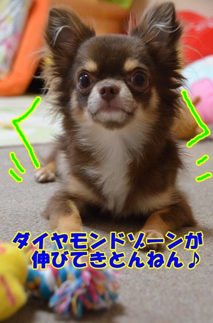 DSC_8607.jpg