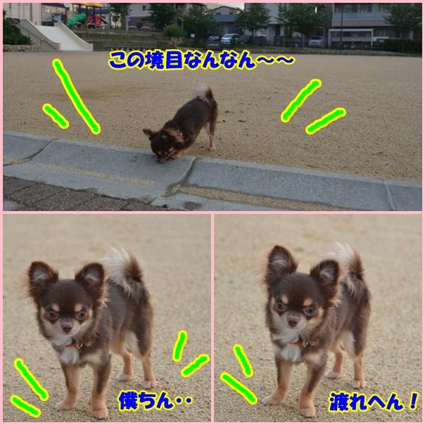 m1page.jpg
