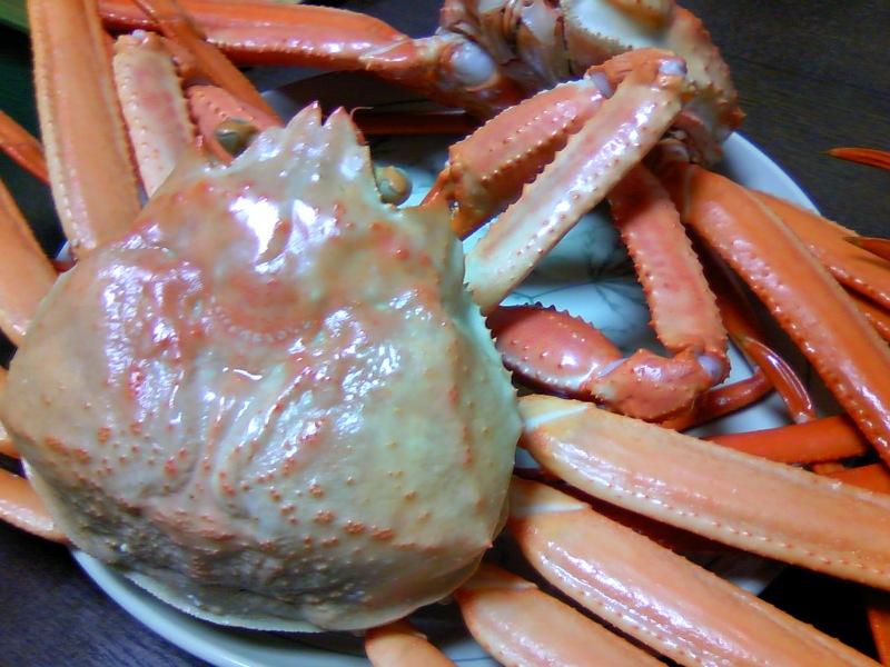 Marの人生の一片-蟹