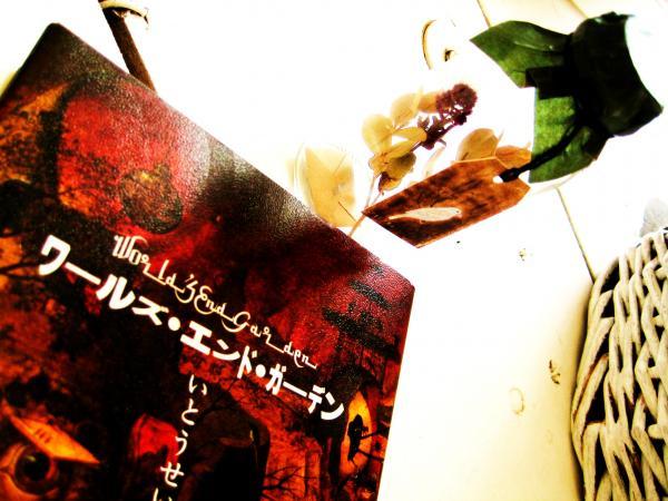 010_convert_20100625154646[1]