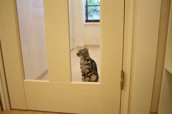 ドアのあちら