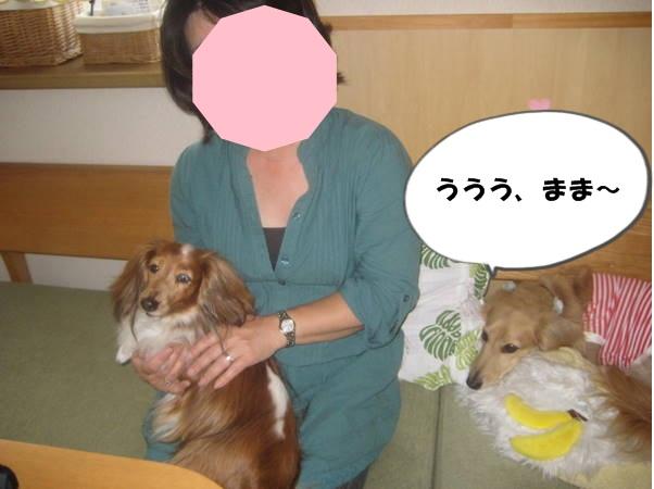 IMG_0415_678.jpg