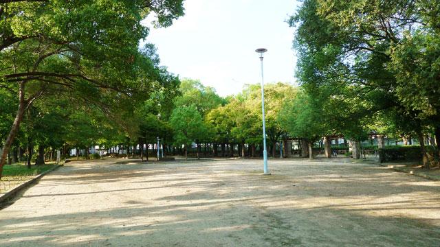 20101007_016.jpg