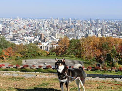旭山公園③