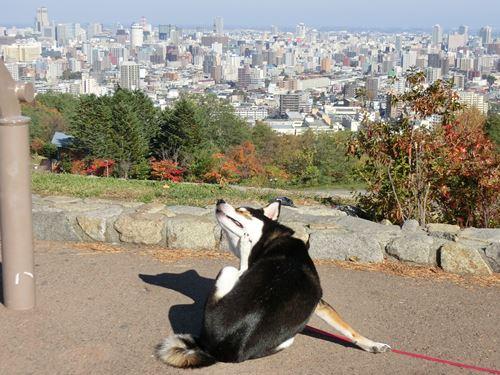 朝日山公園②