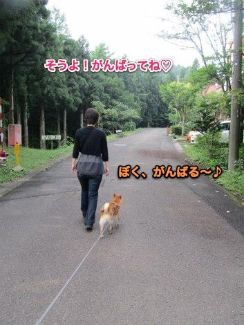 IMG_1496s.jpg