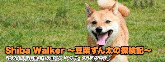 Shiba Walker ~豆柴ずん太の探検記~