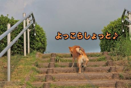 IMG_3441s.jpg