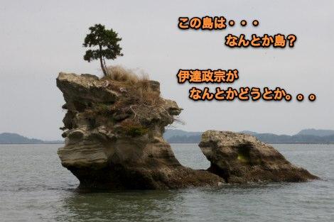 IMG_4684sb.jpg
