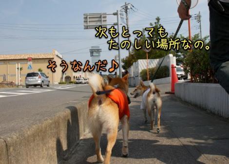IMG_4889s.jpg