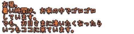 comment5.jpg