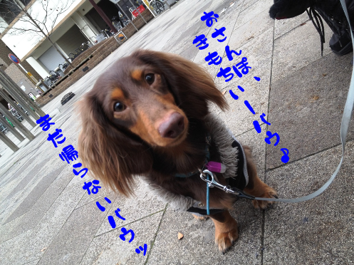 2012030701.png