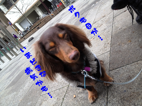 2012030702.png