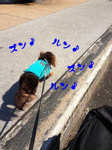 2012031603.jpg