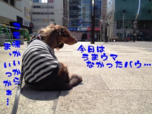 2012032108.jpg