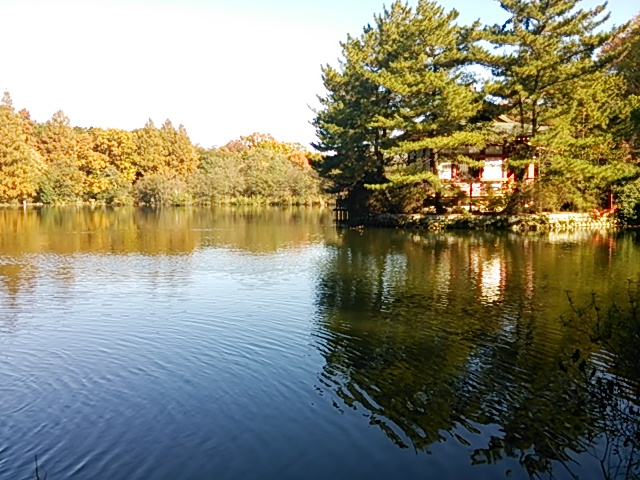 石神井公園06