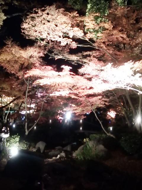 大田黒公園_a03