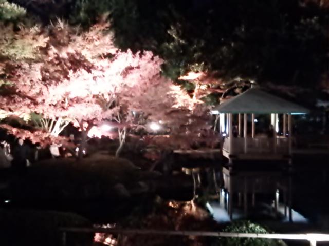 大田黒公園_a06