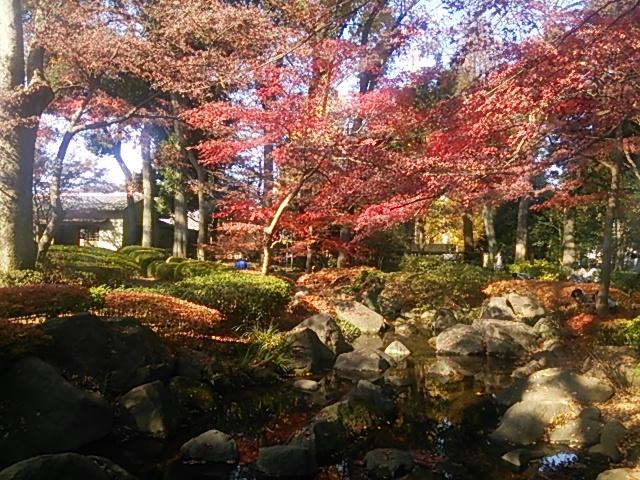 大田黒公園_a_h_03