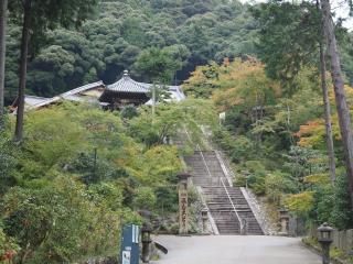 三室戸寺-参道