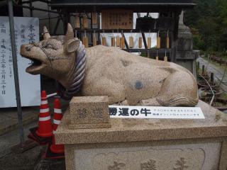 三室戸寺-牛