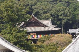 長谷寺-本堂コピー