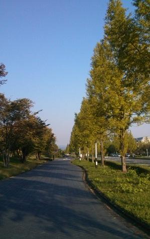 mtasekoiya_20121021191322.jpg