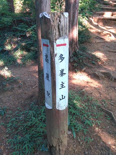 nagatadai_tohnosu3.jpg