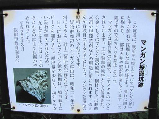 ryugaisan5.jpg