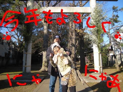 IMG_5058.jpg