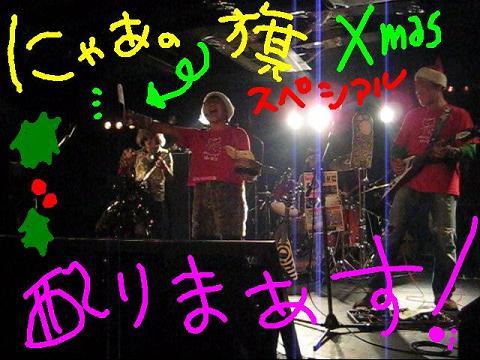 nyaa_20111225191733.jpg