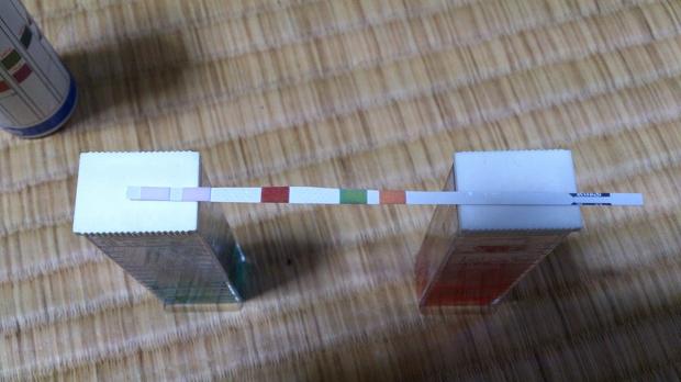 テトラテスト5in1(2)