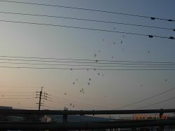気球出発②