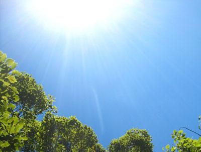 昨日は暑かったぁ~