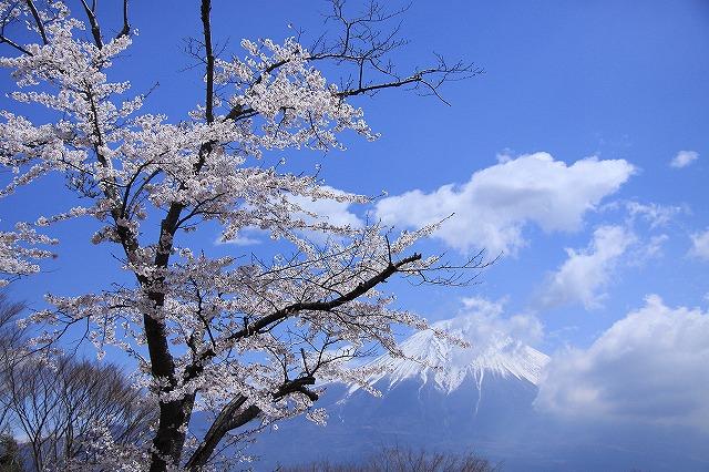 IMG_2494田貫湖