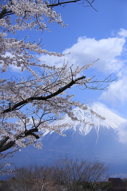 IMG_2490田貫湖