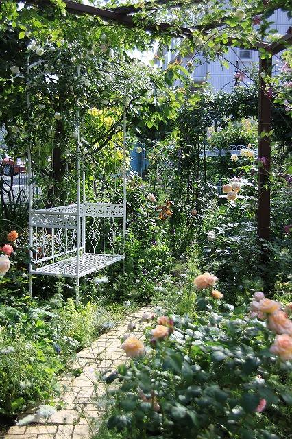 IMG_0572ゆうさんのお庭