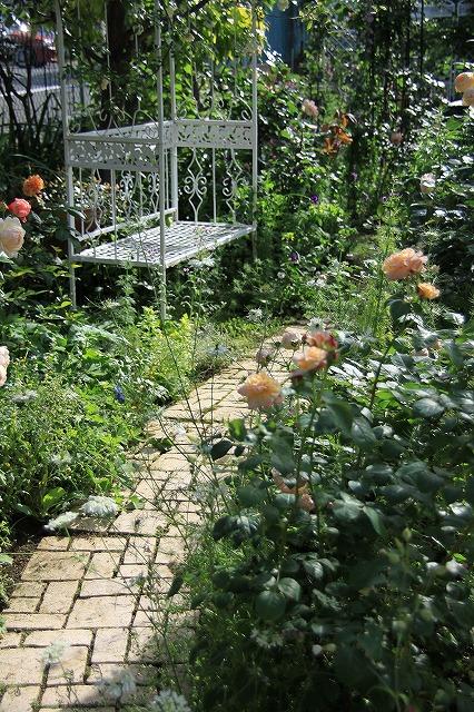 IMG_0571ゆうさんのお庭