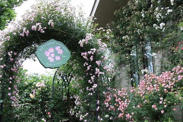 IMG_0616おじむくさんのお庭