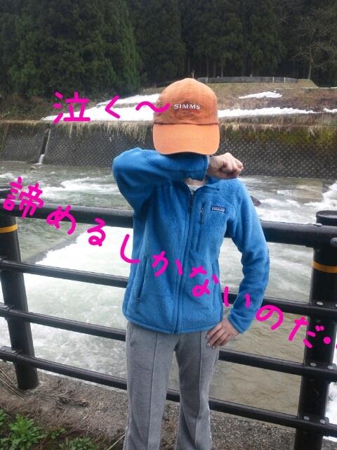 2012541539.jpg