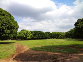 SONYのDSC-WX50で行田公園を撮影してみました。