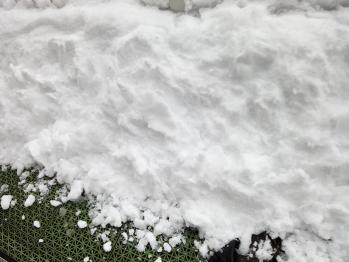 関東地方に降った昨日の大雪は凄かったですね。