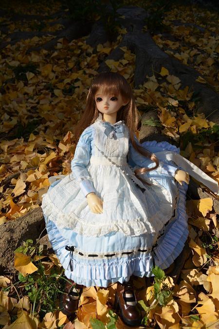 アリスの庭 くるみ1