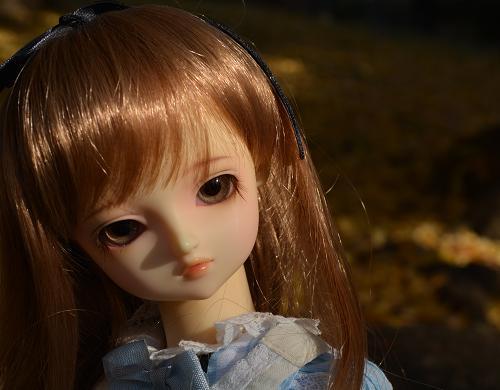 アリスの庭 くるみ4
