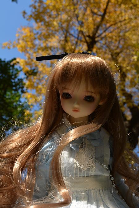 アリスの庭 8