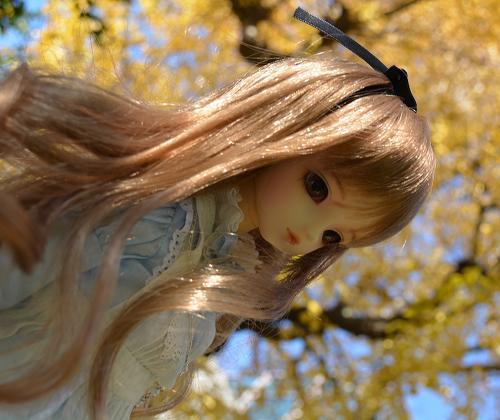 アリスの庭 くるみ11