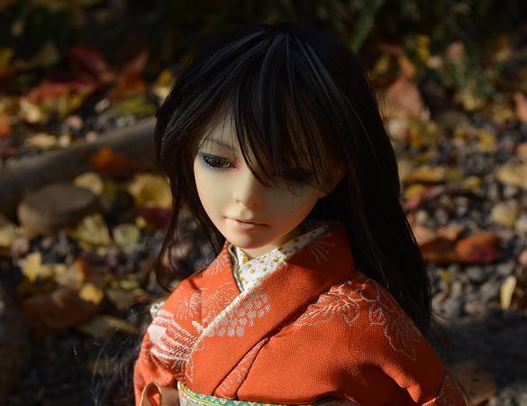 冬紅葉 椿10