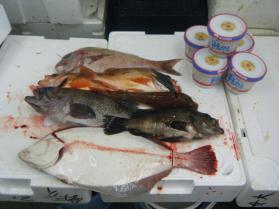 3鮮魚セット5.31