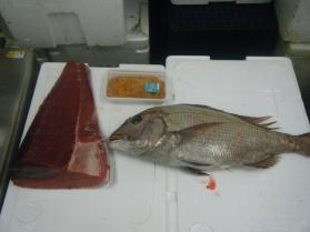 16鮮魚セット5.31
