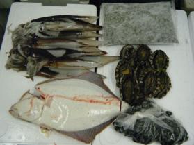 16鮮魚セット7.31